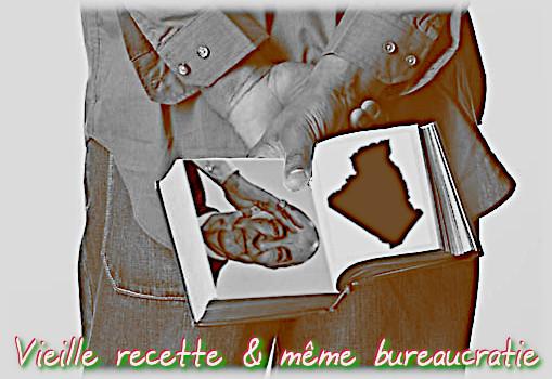 Désapprobation de la constitution en Algérie